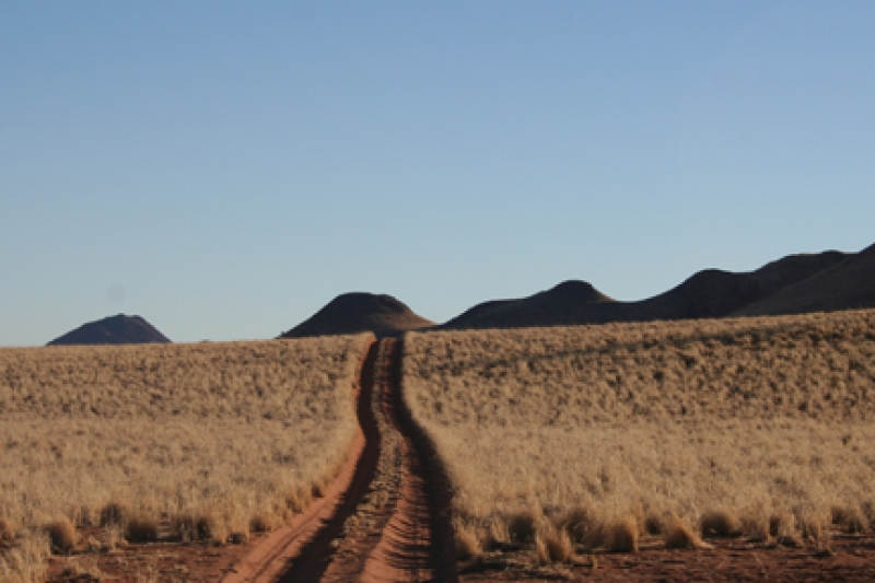 Typical off road track, self drive Namibia