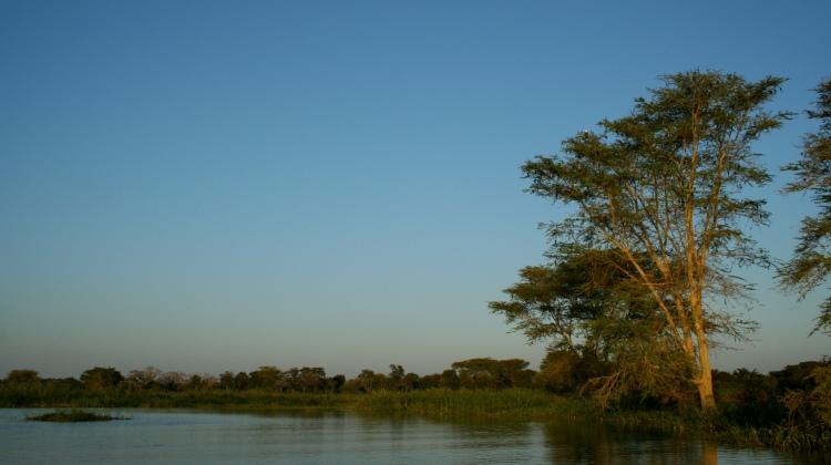 Real Malawi
