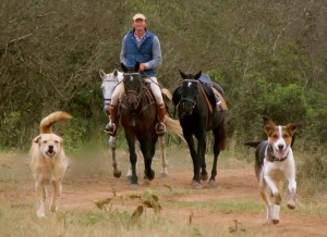 Gordie Church taking the dogs for a run, Safaris Unlimited, Kenya