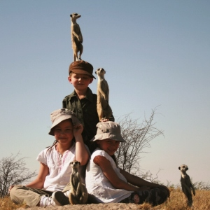 Meerkats using children as lookouts