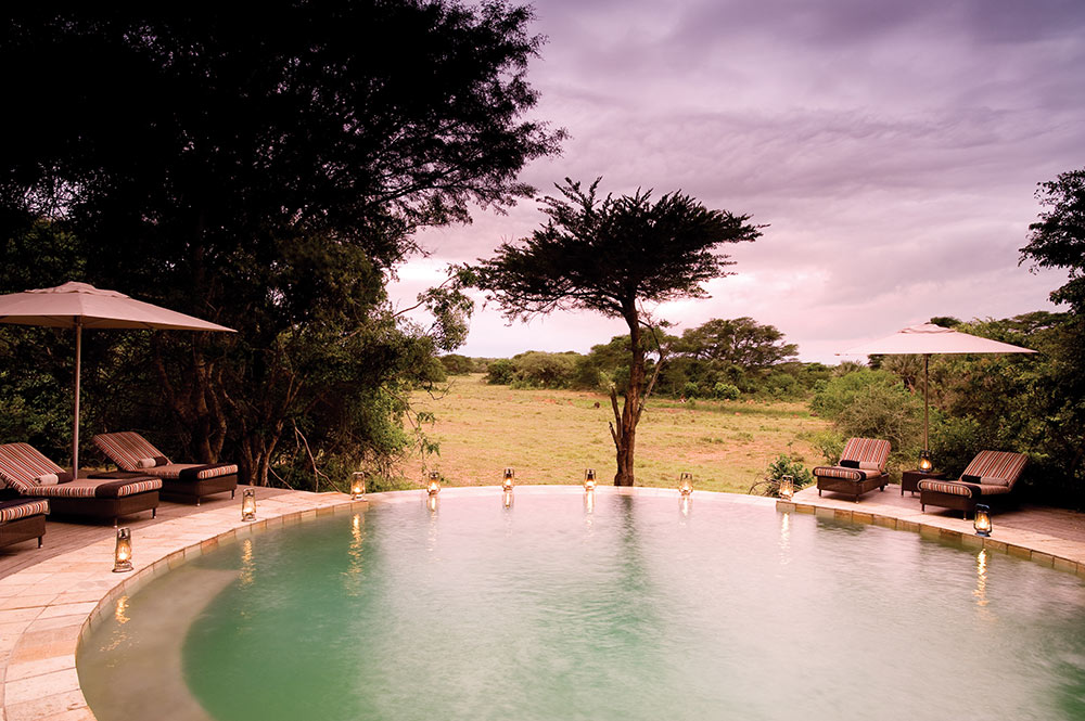 phinda south africa forest pool