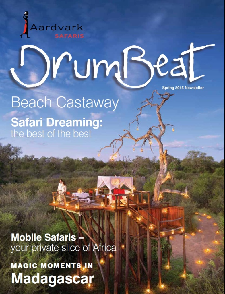 Drumbeat Spring 2015 Romantic candlelit treetop bedroom at Lion Sands
