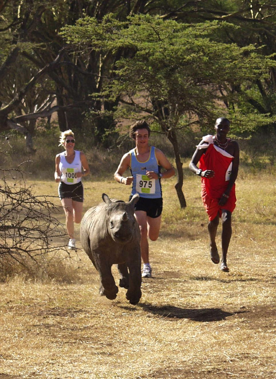 Running with a Baby Rhino