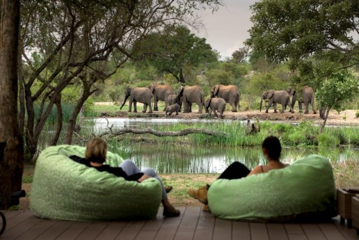 two people watching elephants from bean bags on a deck