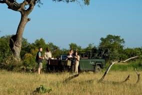 children on a game drive