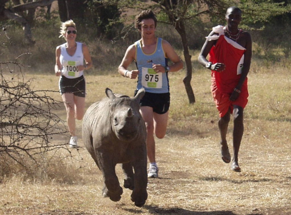 Africa marathon Kenya - runners with baby rhino