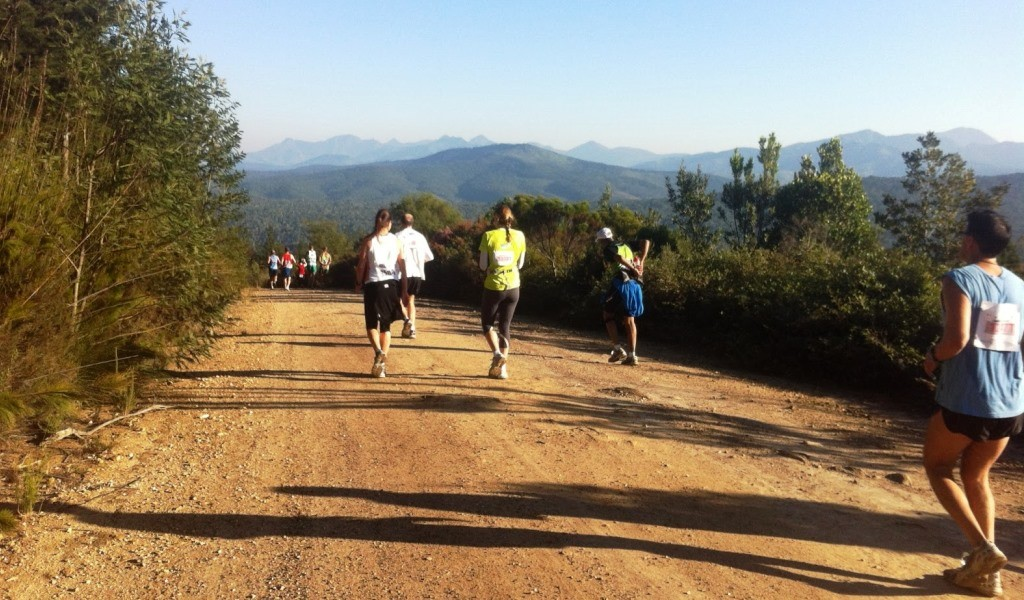 The Knysna Forest Marathon