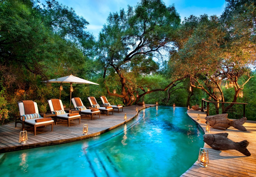 Best safari swimming pools in africa for Swimming pool covers south africa