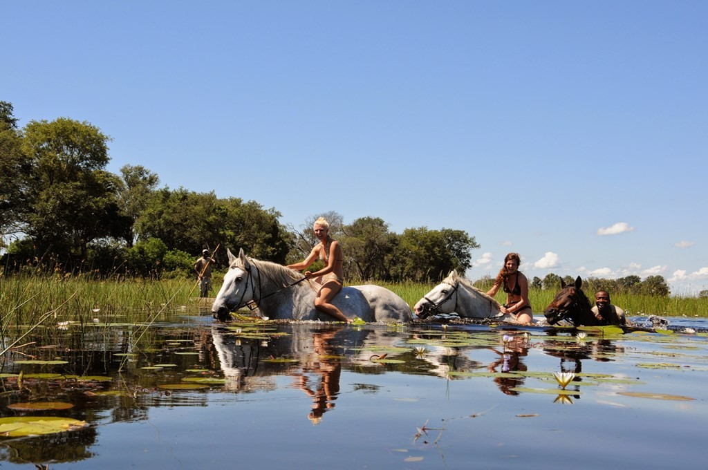 Women and guide swimming with their horses, African Horseback Safaris