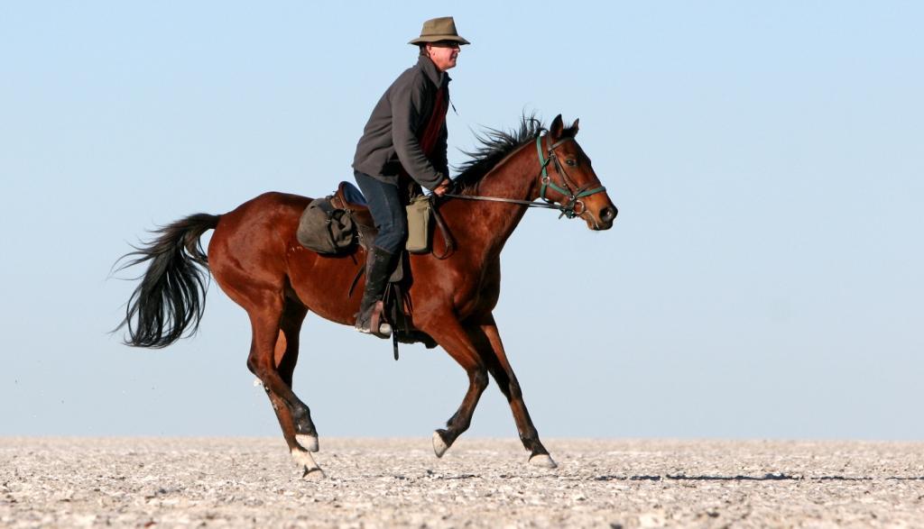 Bon Jovi, happy now, galloping on the salt pans at Ride Botswana