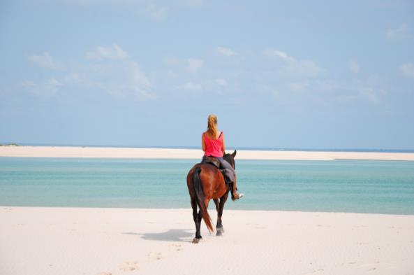 Brutus Mozambique Horse Safaris rider looking out to sea