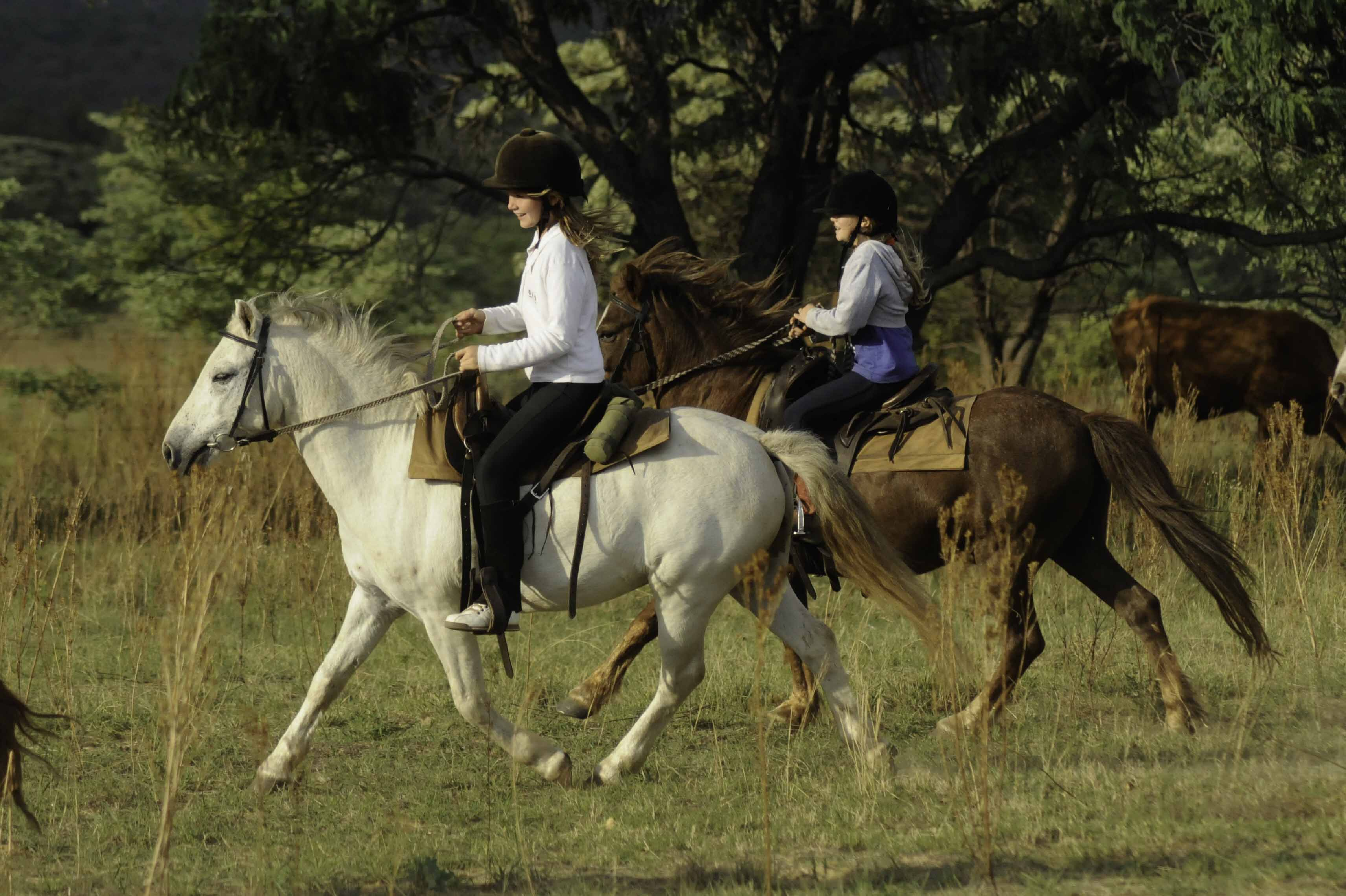 10 African riding safaris for beginners to expert riders