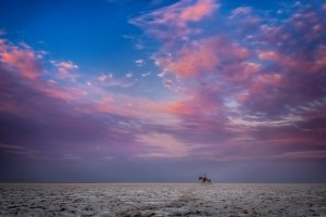 A lone rider on the dry salt pans Makgadikgadi under a purple sky
