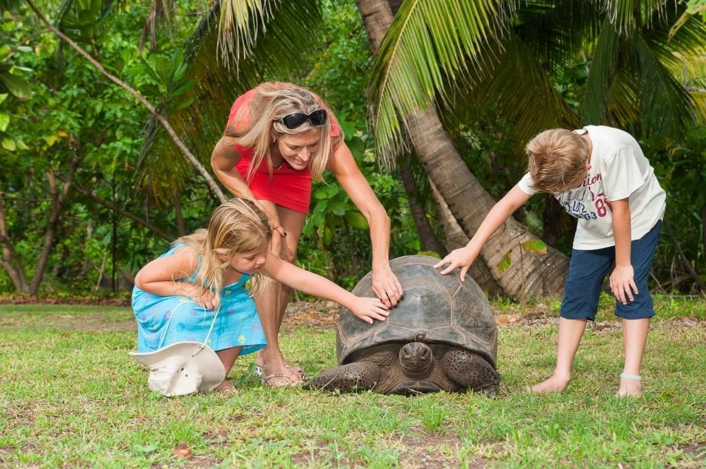 children meeting the local wildlife at North Island Seychelles