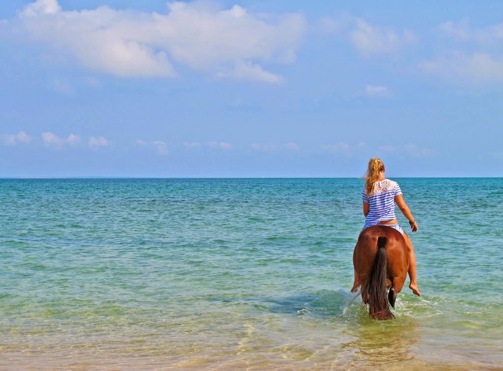 Beautiful safe beaches, Mozambique Horse Safaris, Mozambique