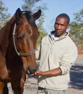 safari horse Mr Beam and guide, Ride and Walk Botswana