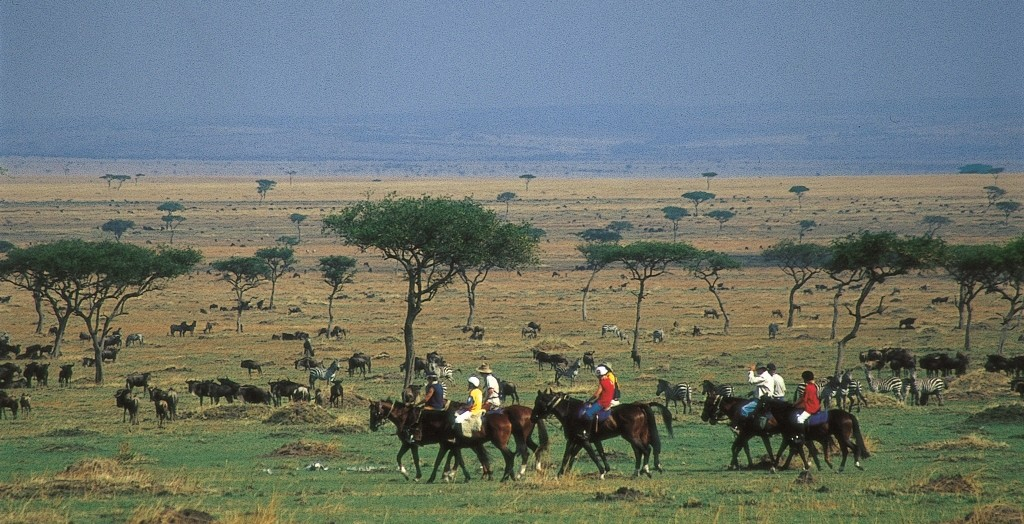 Riding with the wildebeest herd, Offbeat Riding Safaris, Kenya