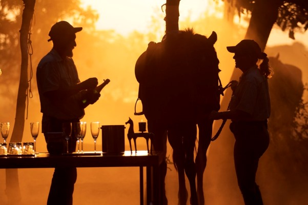 Okavango Horse Safaris (2) silhouette of staff opening a bottle of champagne 600 400