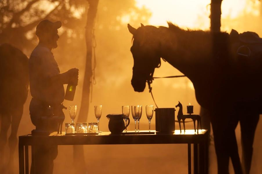 sunset shinning benind a horse, Okavango Horse Safaris, Botswana