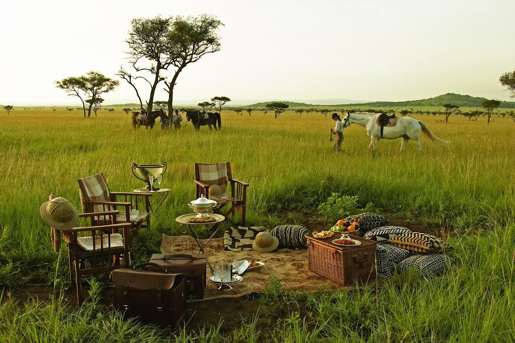 A picnic on a plain with horses and riders, Grumeti, Tanzania