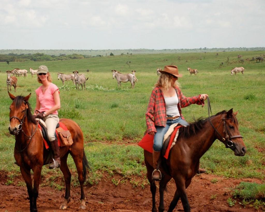 Two ladies riding on a green field with zebra, Borana Riding, Laikipia, Kenya