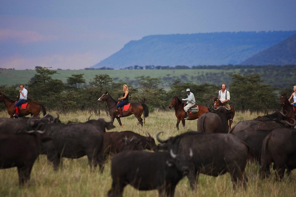 Riders amongst wildebeest, Safaris Unlimited, Kenya
