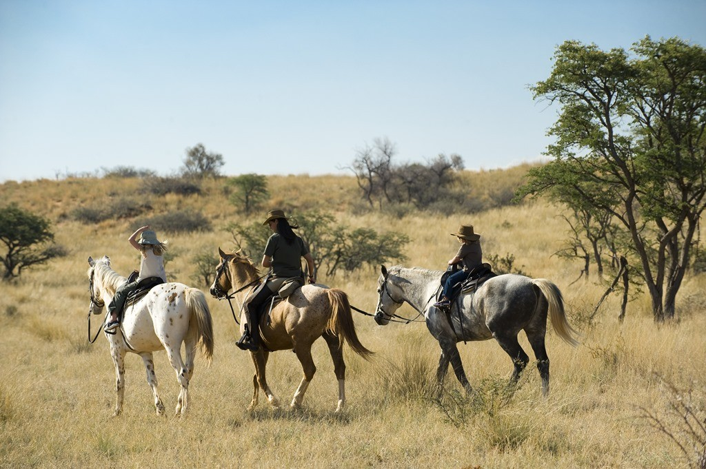 family riding with guide at Tswalu, Kalahari, South Africa