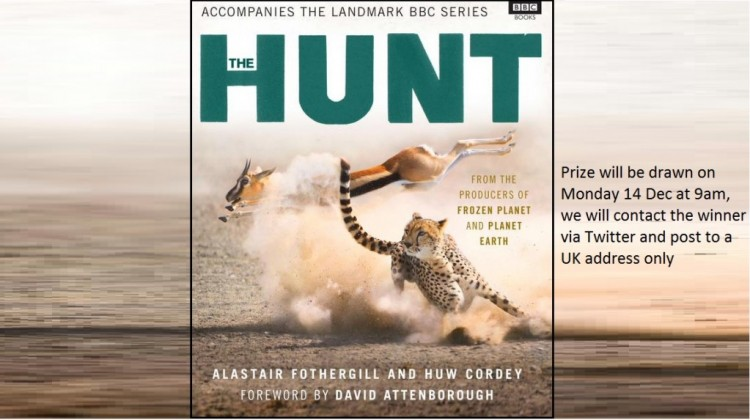 Win a copy of the BBC1 documentary book 'The Hunt'