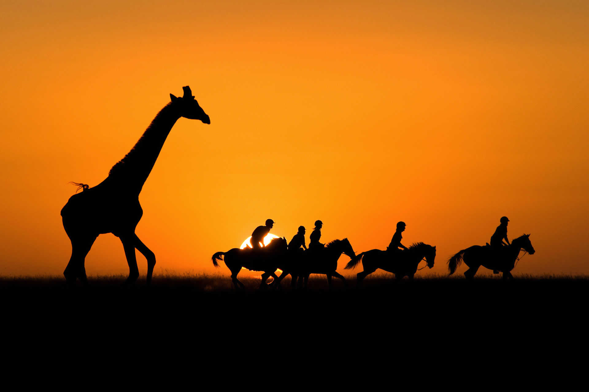 Riding Safaris by riding experts