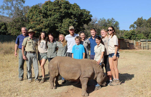 Prince Harry volunteering with rhino rehabilitation centre Khulula Care for Wild South Africa image credit Daily Express