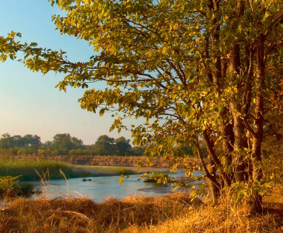 Unspoiled wilderness in North Luangwa