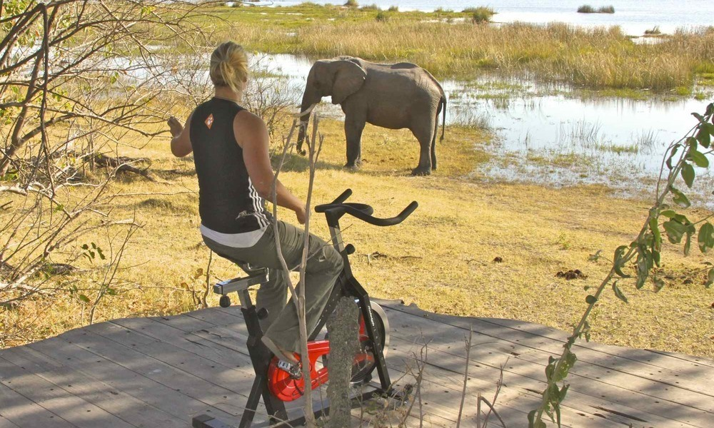 Watch elephants while you work-out, Zarafa Camp, Botswana. Image credit: Great Plains Conservation
