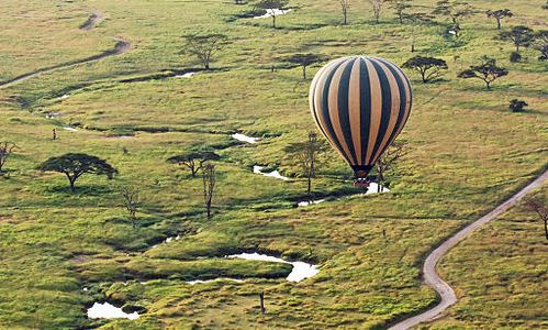 Aerial Serengeti - Harvey Barrison on Flickr