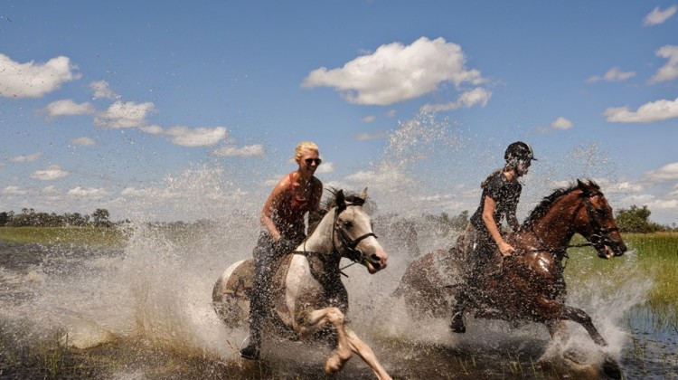 Horse riders galloping through the Delta, Botswana