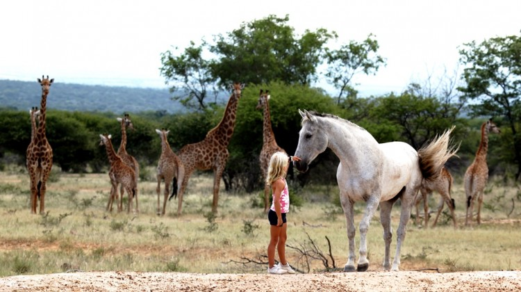 family riding safaris at Ants Hill