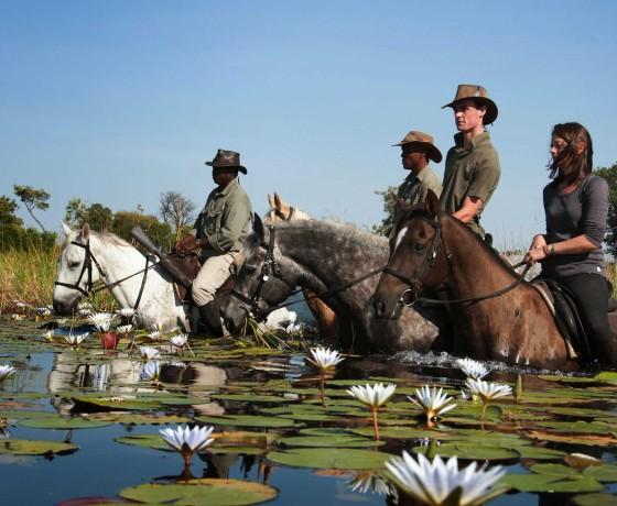Riding safaris