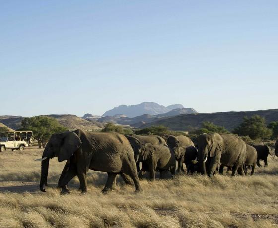 The remote plains of Damaraland