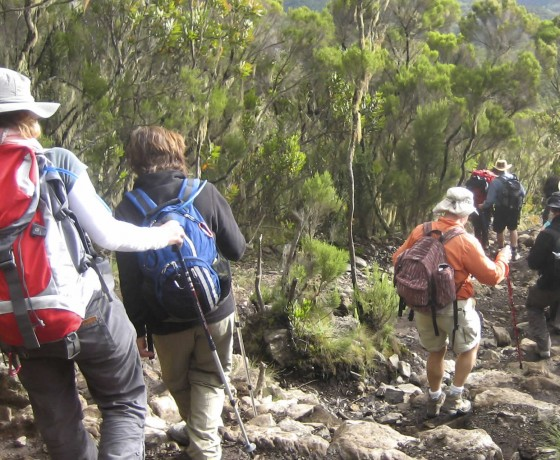 Small group Kilimanjaro climb