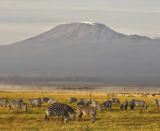 When to climb Kilimanjaro