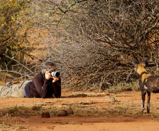 Specialist photographic safaris in Kenya