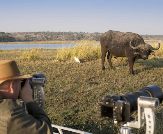 Arranging a specialist photographic safari