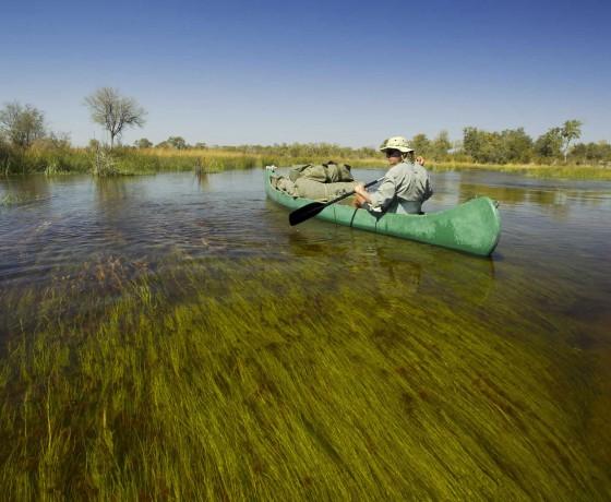 Multi day canoe trips