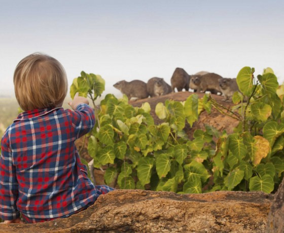 Family safaris experienced first hand