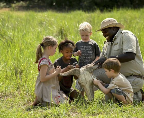 Where's best for a family safari?