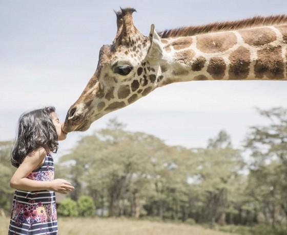 Malaria free family safaris