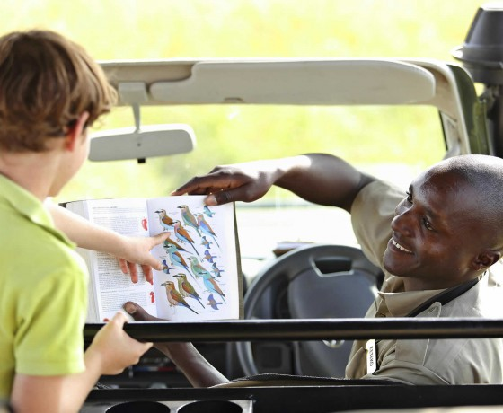 Expert family safari guides