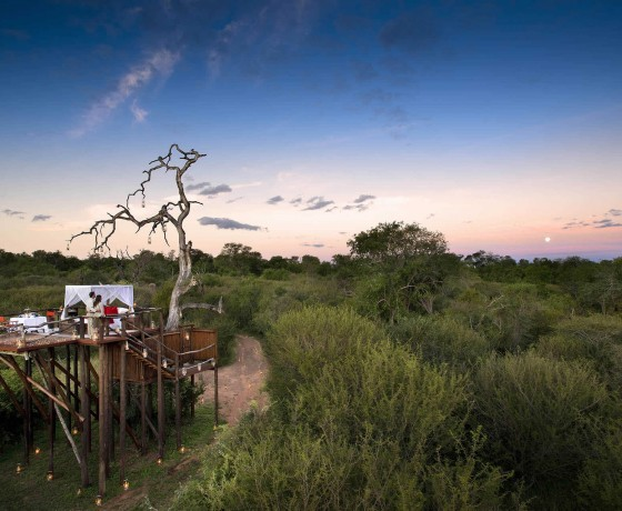 South African honeymoons