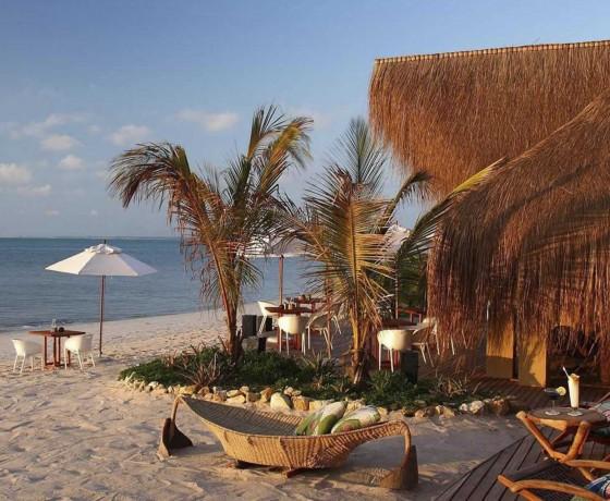 Safari and beach honeymoons