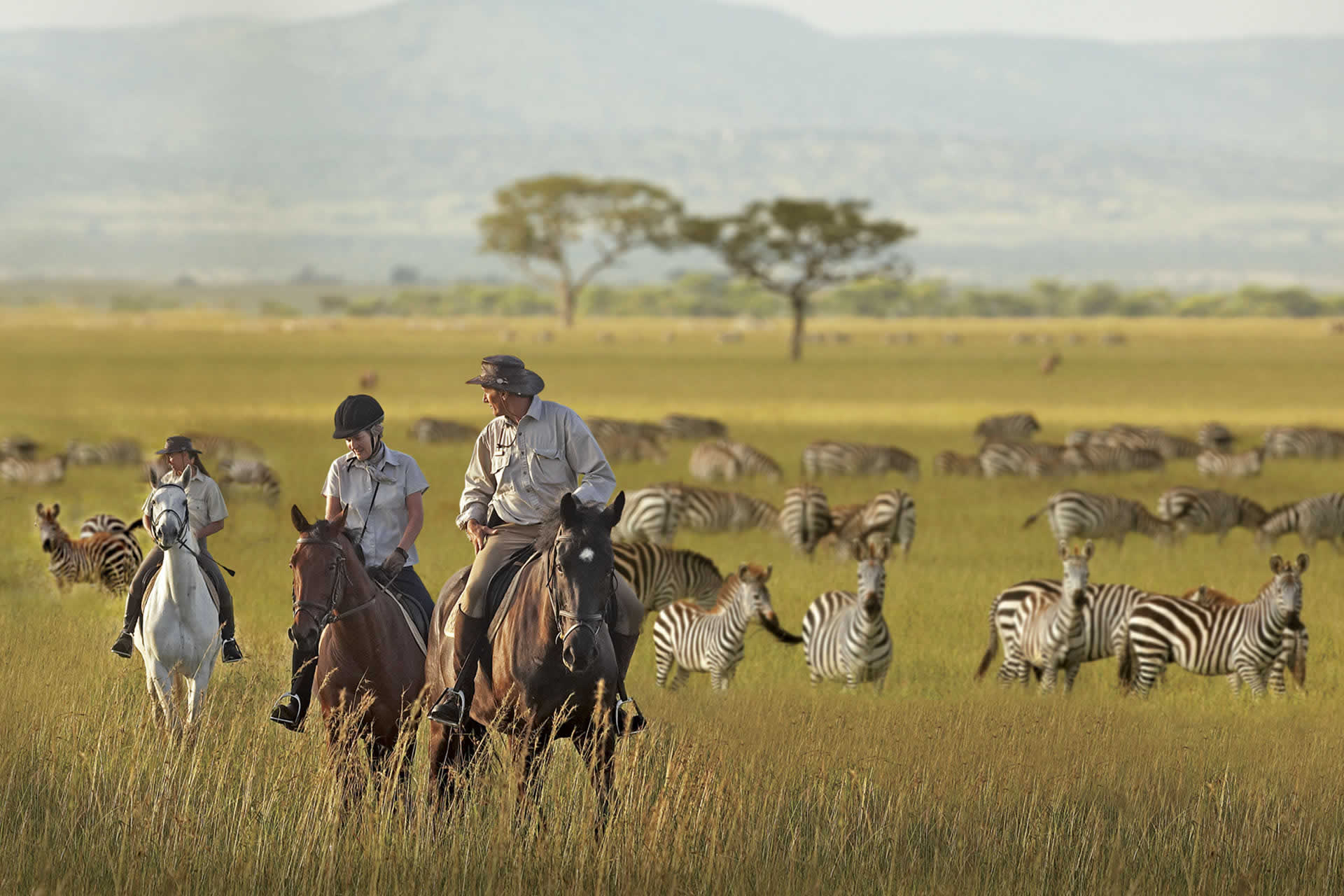 Horse Riding Safaris Riding Holidays In Africa Safari Lodges - 10 best safaris in africa