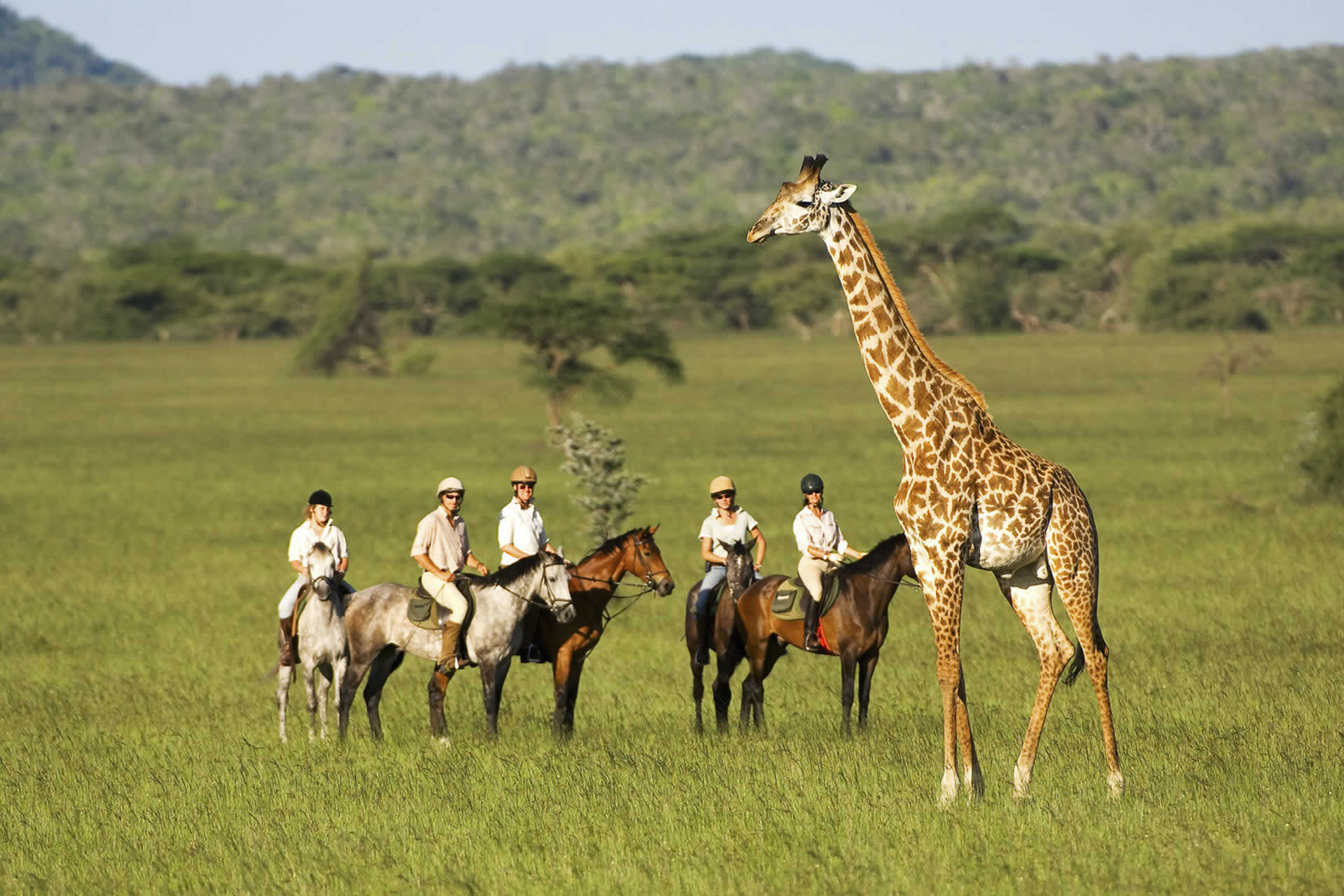 Image result for Riding safari, Kenya